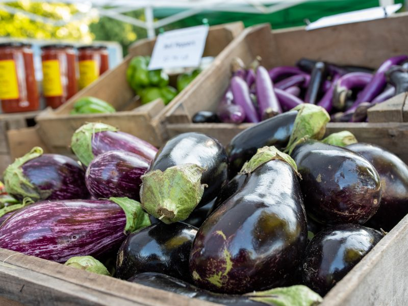 Bins of eggplants and peppers at Tarrytown Farmers Market